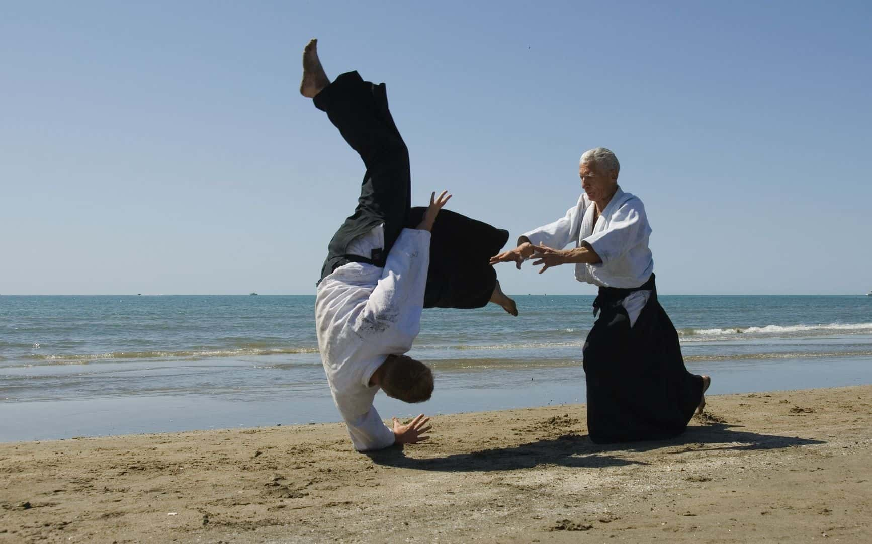 verbal aikido