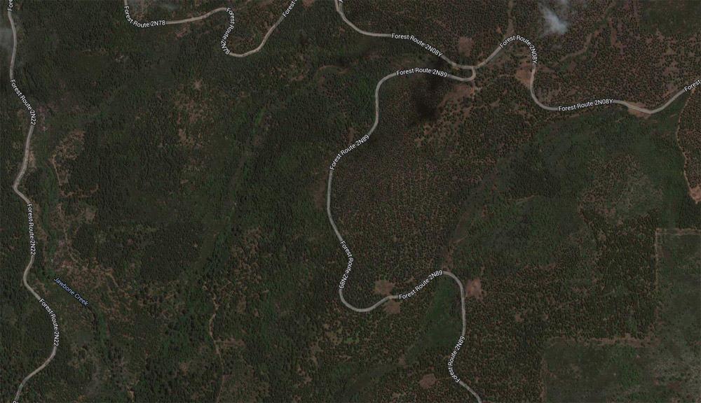 Rim-Fire-plantations