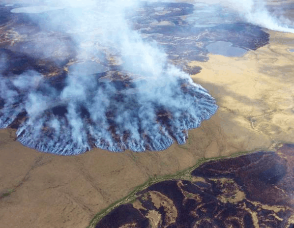 This year, 63% of ALL wildfire acres burned in the U.S. have burned in Alaska, much of it over remote tundra ecosystems.